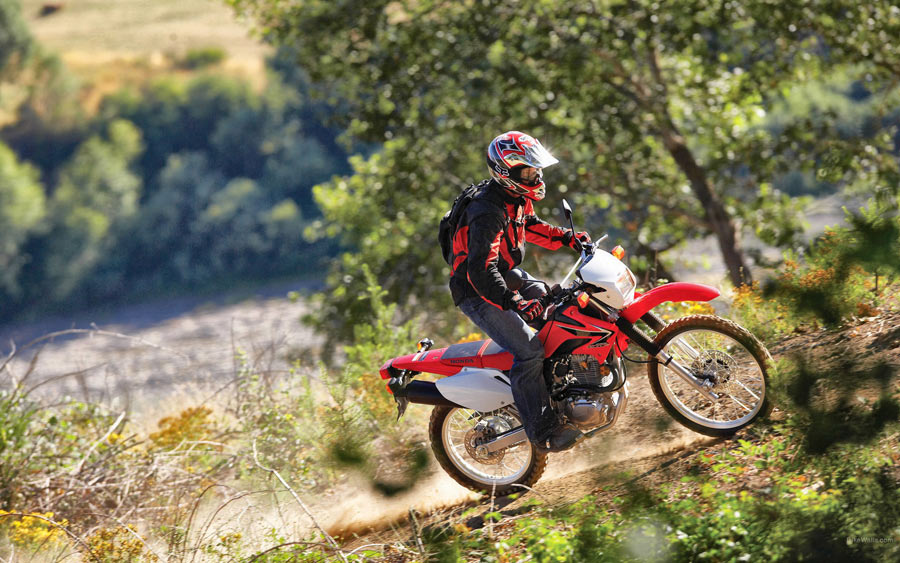 Test Ride: 2008 Honda CRF230L Review - Bikes - Reviews - all-pages