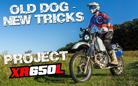 Old Dog, New Tricks - Honda XR650L Project Bike