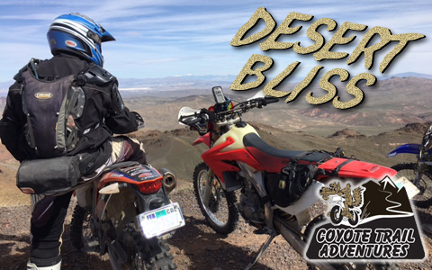 Desert Bliss - Touring Through the Mojave and Death Valley